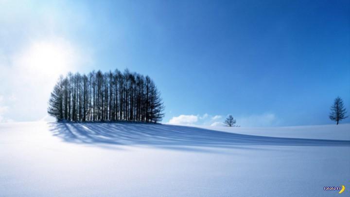 В Беларуси замерзают насмерть
