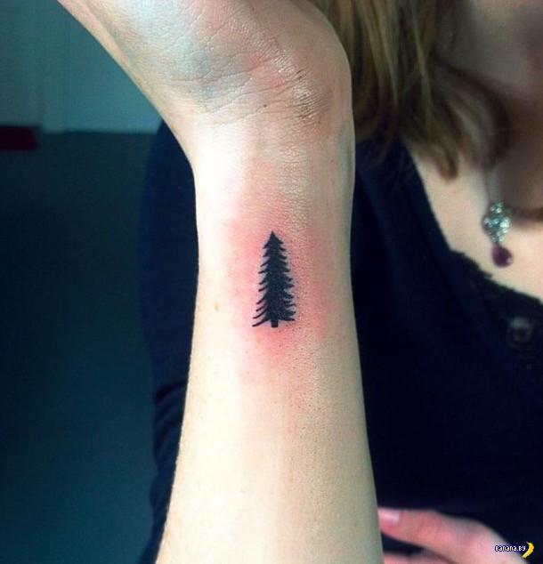 Татуировки на зависть - 61 - Нано