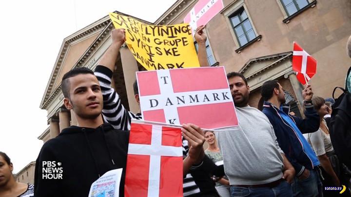 Дания отберёт у беженцев всё нажитое непосильным трудом