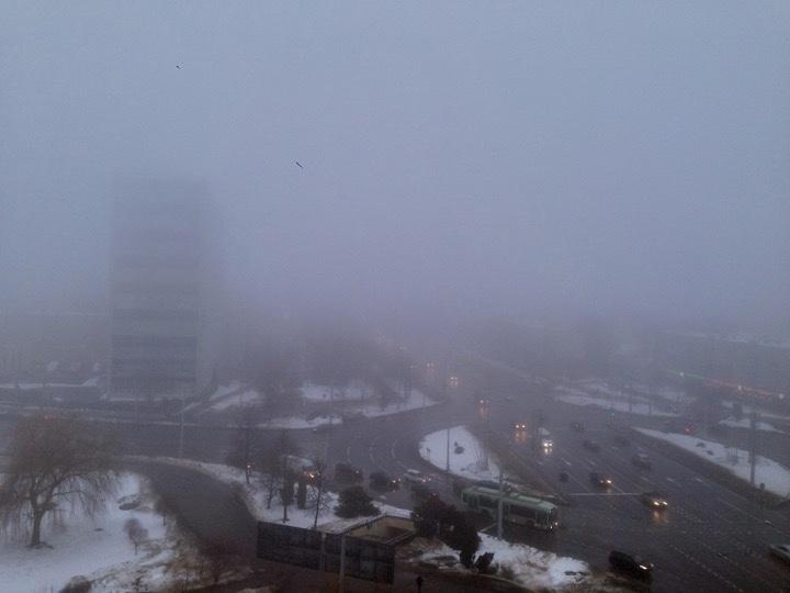 Погода: а вот и аномальная оттепель!