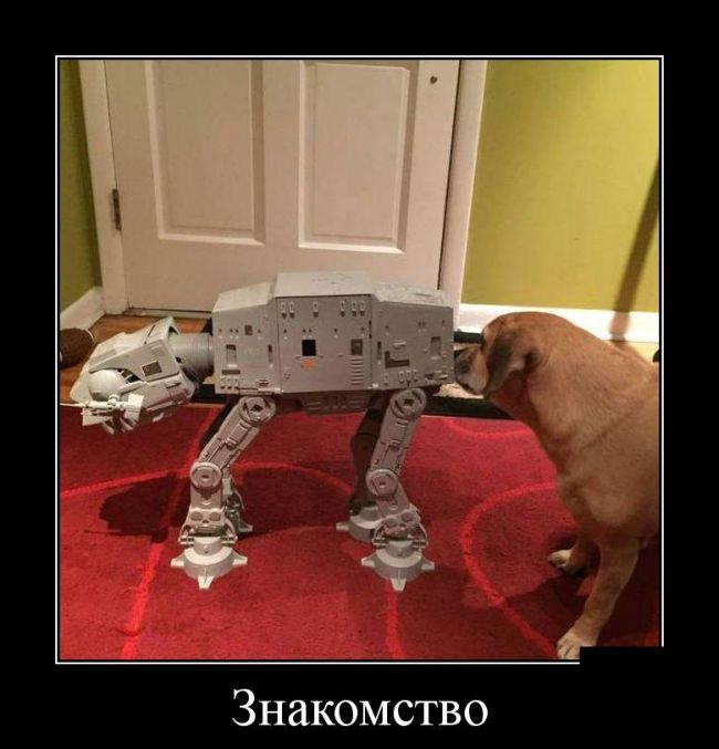 Демотиваторы - 615