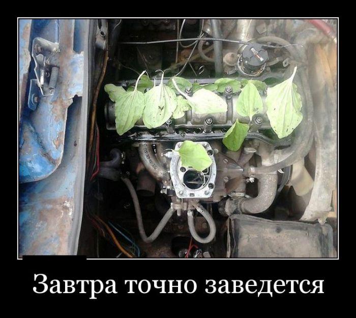 Демотиваторы - 617