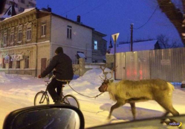 А тем временем в России - 48