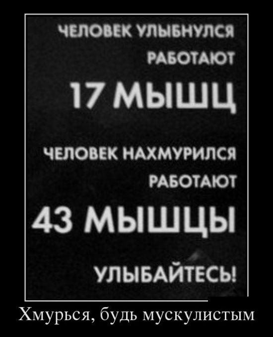 Демотиваторы - 627