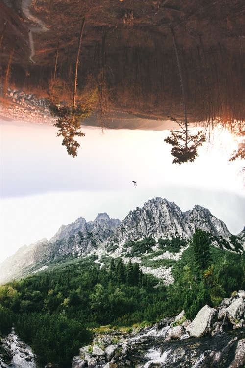 Россыпь красивых фотографий - 116