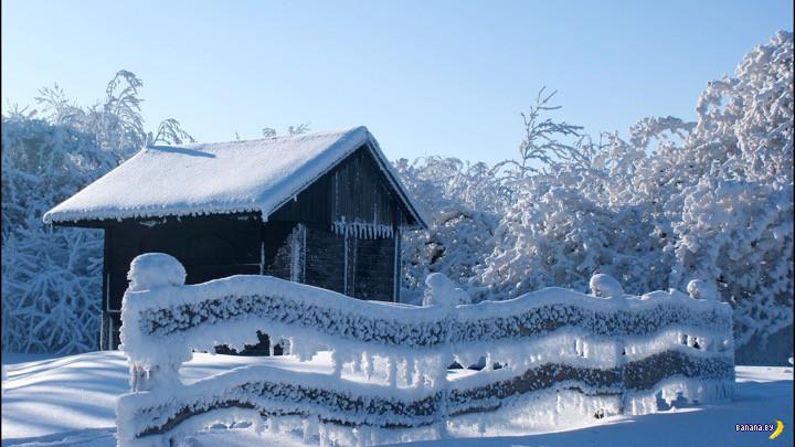 Жировки съел холодный январь