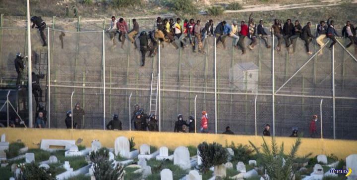 Венгерская стена – итоги