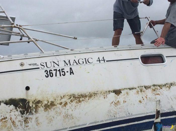 Яхта с мумией на борту