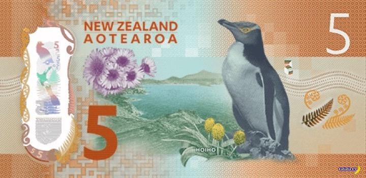 Самая красивая банкнота в мире