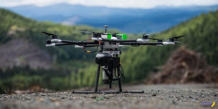 Полезные дроны от DroneSeed