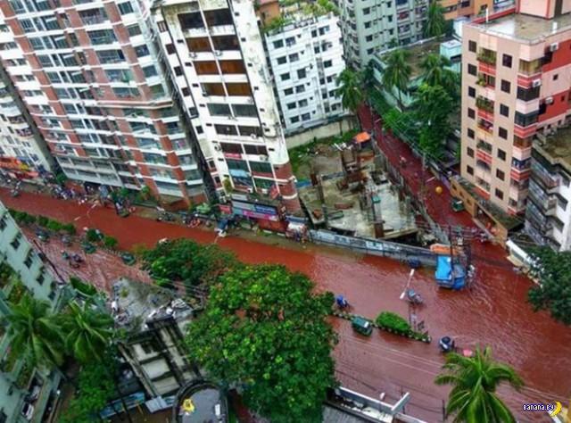 Кровавые реки-улицы в Бангладеш