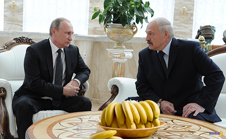 Вся статистика по поставкам бананов в Беларусь