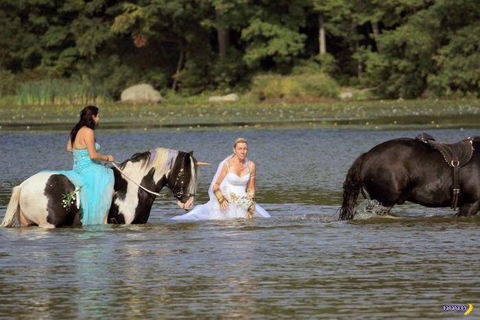Свадебная фотосессия –верхом на единорогах!