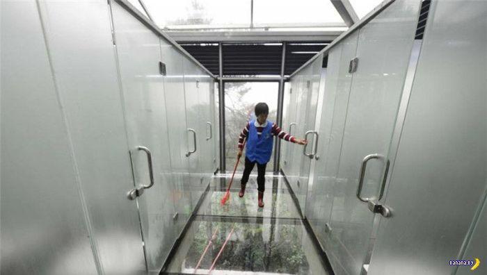 Прозрачный туалет в парке