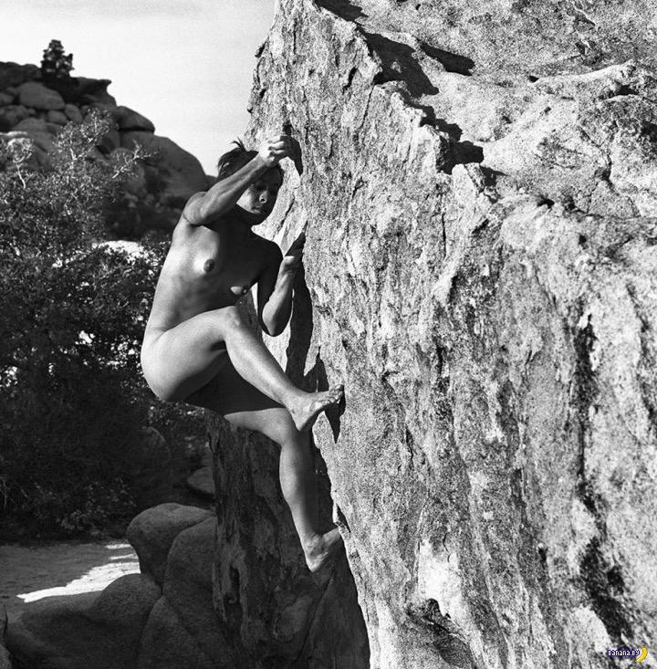 Красивые голые девушки на стену лезут
