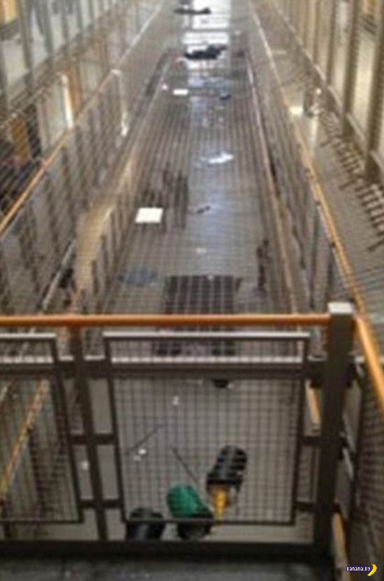 Тюремный бунт и селфи