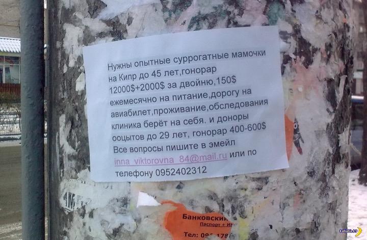 Украинским женщинам предлагают интересный бизнес