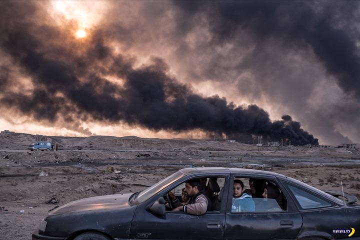 Лучшие фотографии 2016 года по версии The New York Times