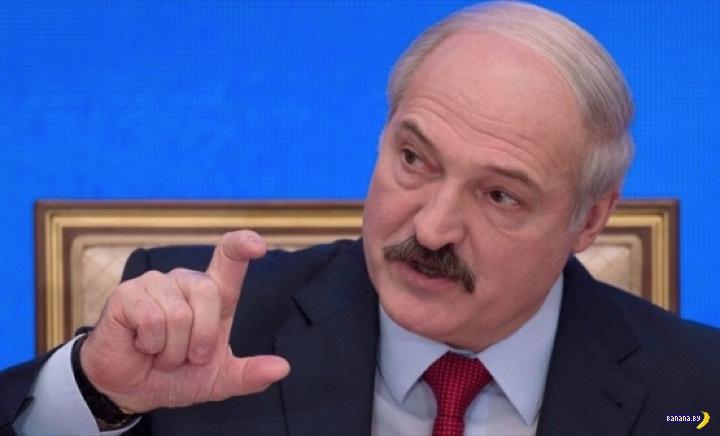 Лукашенко и боярышник