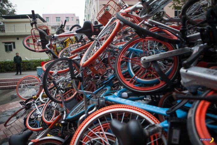 Шаринг велосипедов в Китае