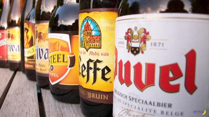 В бельгийском парламенте оставили бесплатное пиво и вино