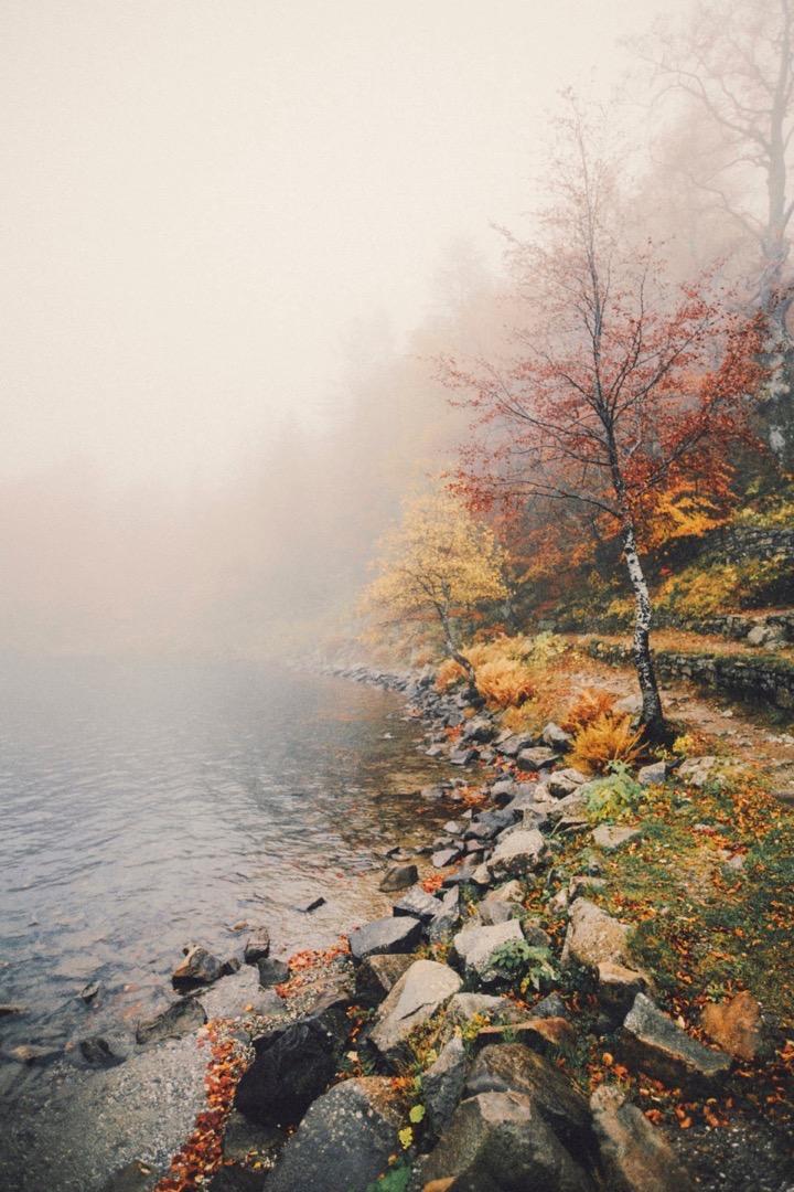 Россыпь красивых фотографий - 159