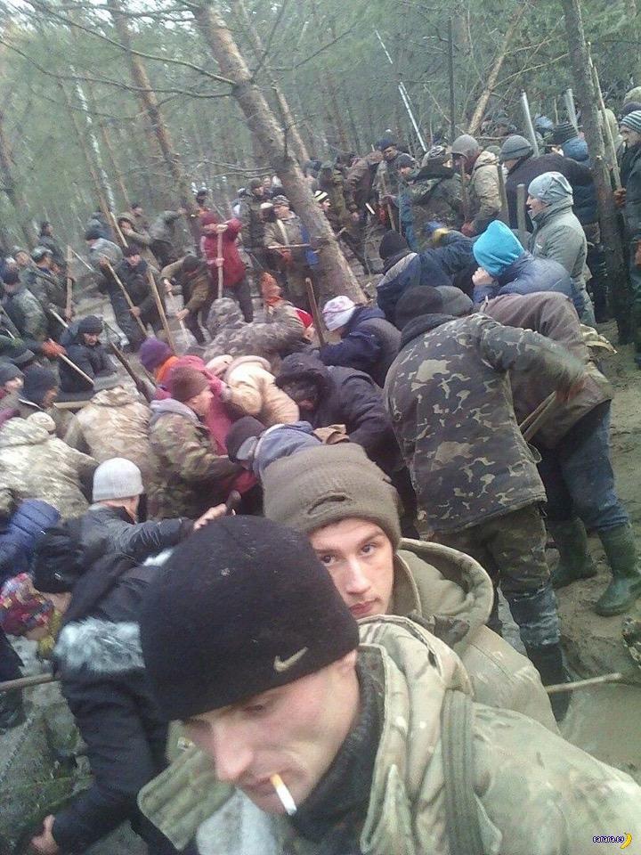 Украинское янтарное чудо