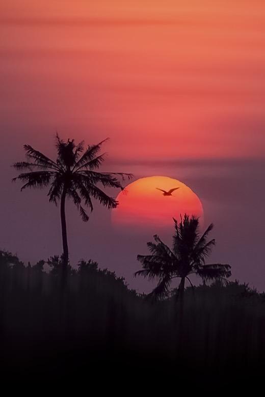 Россыпь красивых фотографий - 160