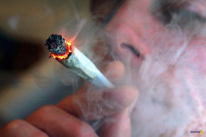 В штате Мэн легализовали марихуану