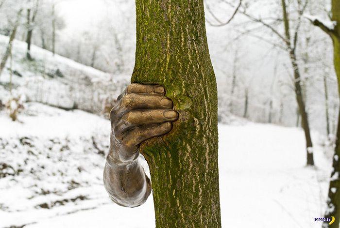 Железная рука против дерева