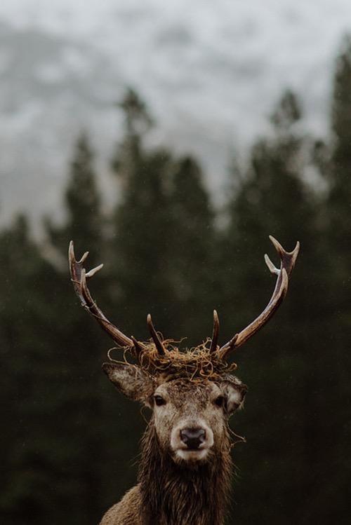 Россыпь красивых фотографий - 163