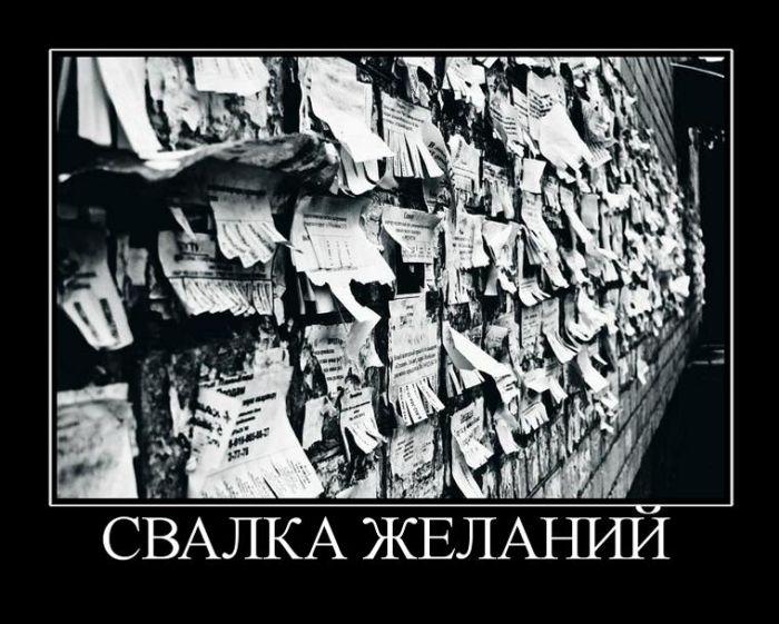 Демотиваторы - 864