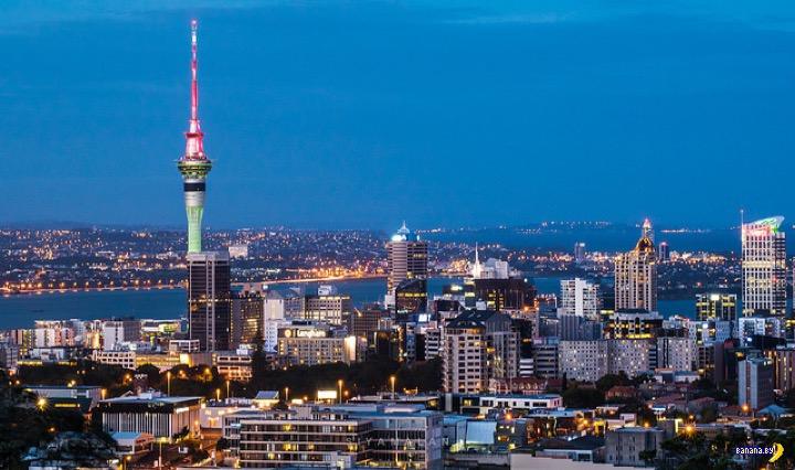 Игроки стали тратить больше в казино Новой Зеландии