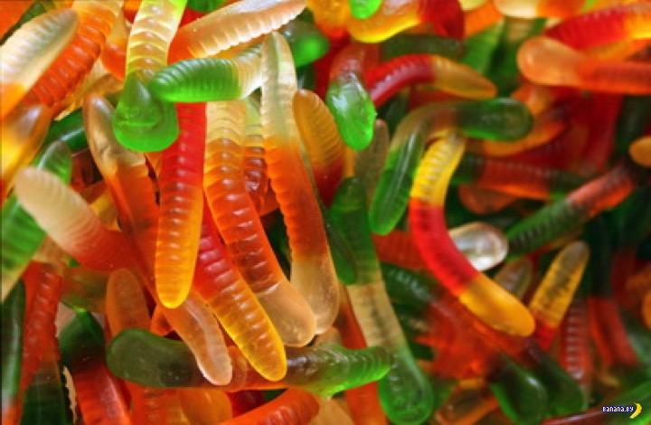 Желатиновые червячки