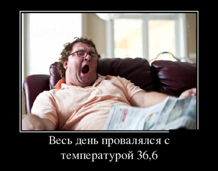 Демотиваторы - 870