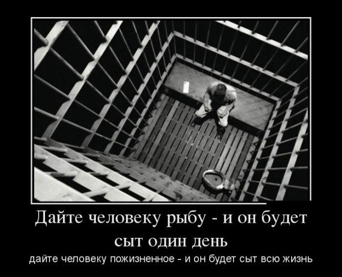 Демотиваторы - 871