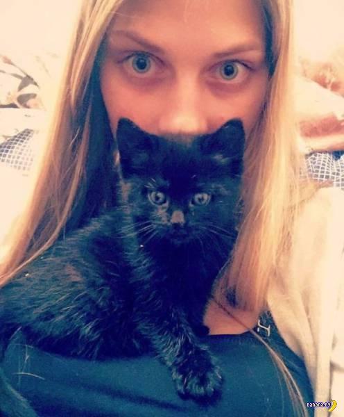 Красота на службе у котиков