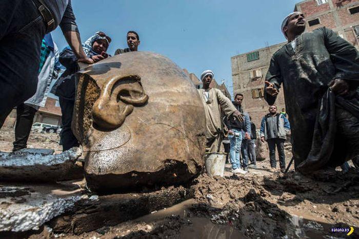 Находка на окраине Каира