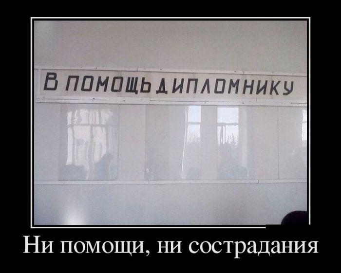 Демотиваторы - 877