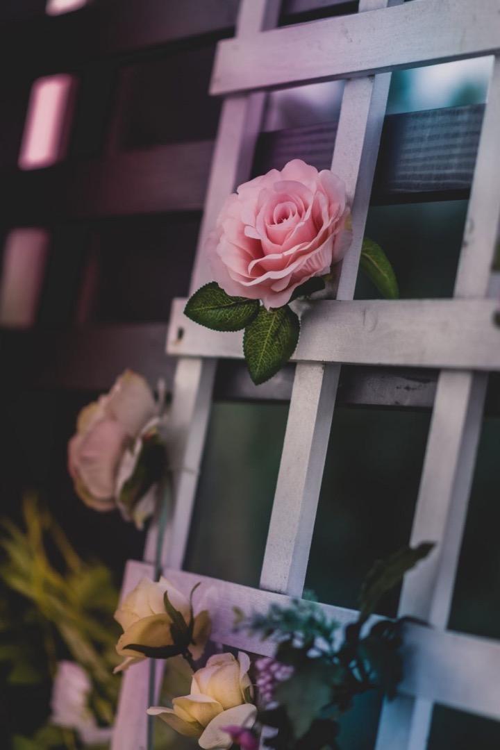Россыпь красивых фотографий - 167