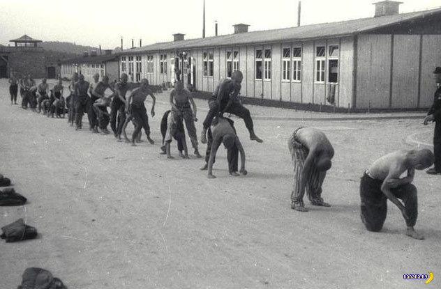 Секреты выживания во время Холокоста