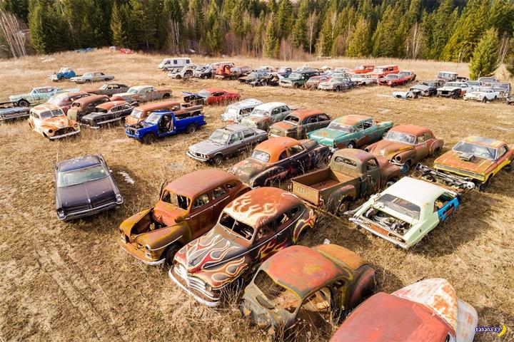 Готовая коллекция автомобилей выставлена на продажу