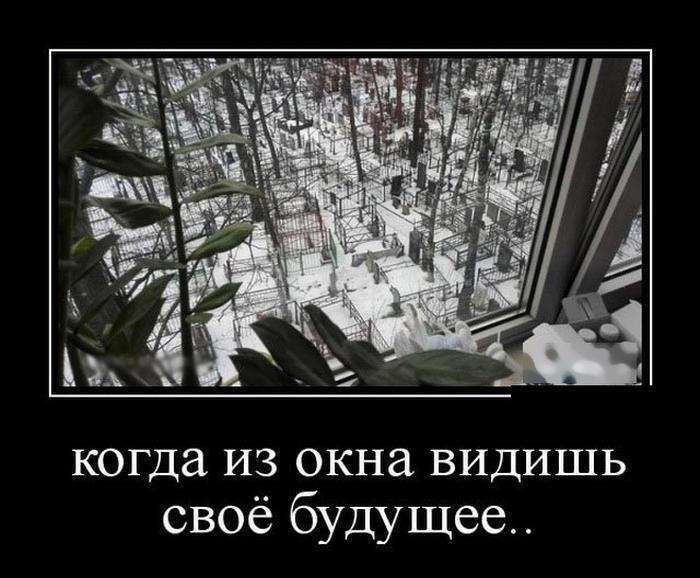 Демотиваторы - 887