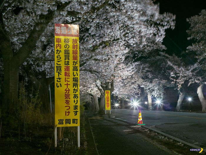 Фукусимские сталкеры