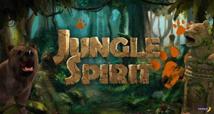 Вышел игровой автомат Jungle Spirit: Call of the Wild