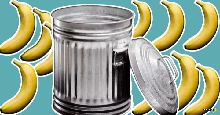 Потраченные бананы