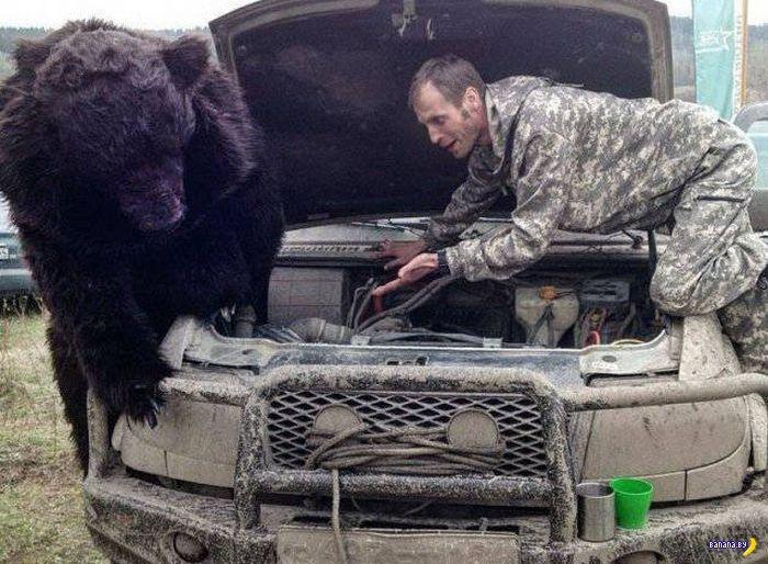 А тем временем в России - 104