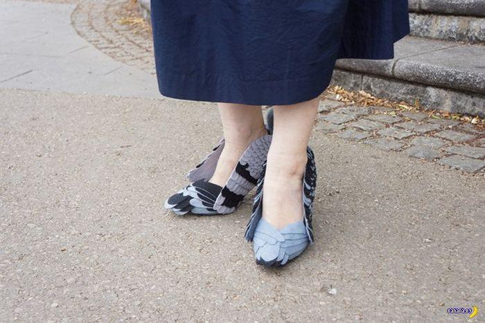 Женщина, что вы делаете с голубями?!