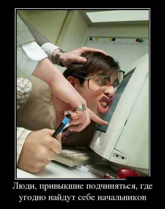 Демотиваторы - 911