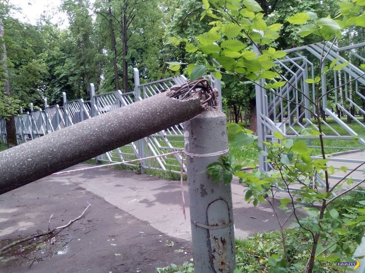 Ураган в Москве – фотографии